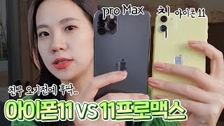아이폰11 VS 아이폰11 Pro Max 빠르고 간단한 2분 비교 리뷰! [디자인, 카메라, 장단점]