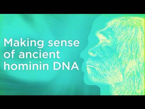 Making sense of hominin DNA