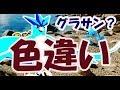 【ポケモンGO】色違いフリーザー限定出現!ゼニガメはサングラス?【グローバルイベントアンロック】