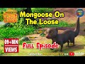 Jungle Book Hindi Cartoon for kids | Junglebeat | Mogli Cartoon Hindi | Episode 32