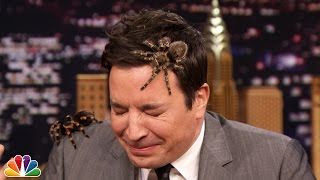 Jeff Musial Creeps Jimmy Out with Mexican Tarantulas thumbnail