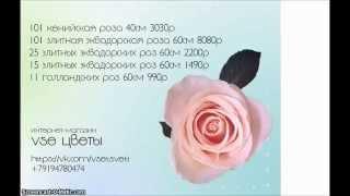 VSE ЦВЕТЫ. ПЕРМЬ. РОЗЫГРЫШ ЯЩИКА ШАМПАНСКОГО(Если твой парень не дарит тебе цветы, позвони нам +79194780474 мы решим эту проблему :), 2014-12-25T16:13:29.000Z)