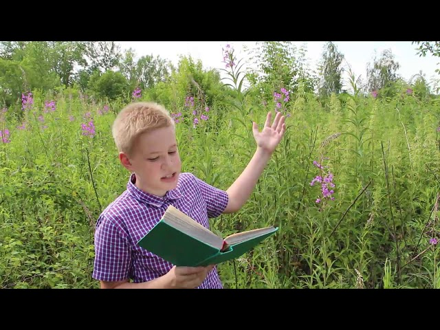 Изображение предпросмотра прочтения – АлександрЮдин читает произведение «Чуть зацветёт иван-чай...» А.Т.Твардовского