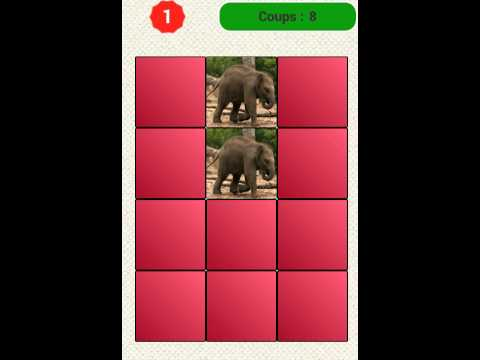 Memory Game - French