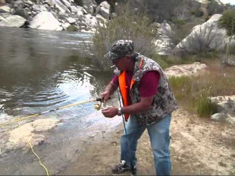 Fishing madness on the kern river youtube for Kern river fishing report