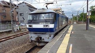 EF210形電気機関車116号機「臨時単行機関車列車(単8491レ)」西立川駅通過 '19.06.11