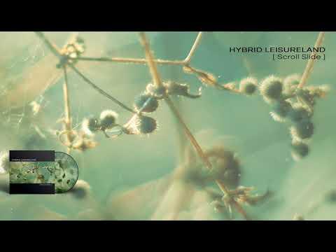 HYBRID LEISURELAND - Scroll Slide - 01 Division and Composition