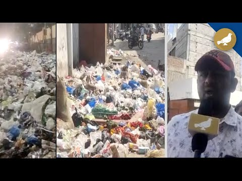 Hyderabad: Garbage piles up, Old city stares at disease outbreak