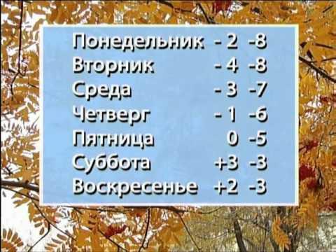 Погода в великоплоском в великомихайловском районе
