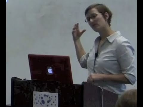 Galactic Halos - Risa Wechsler (SETI Talks)