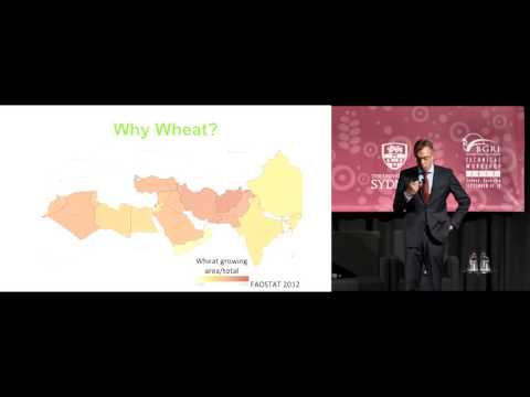 Martin Kropff: CIMMYT and women in wheat: From the farm to the lab