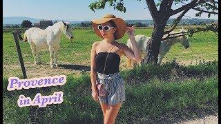 Прованс в апреле. Виноградники и озеро | Walking in Provence