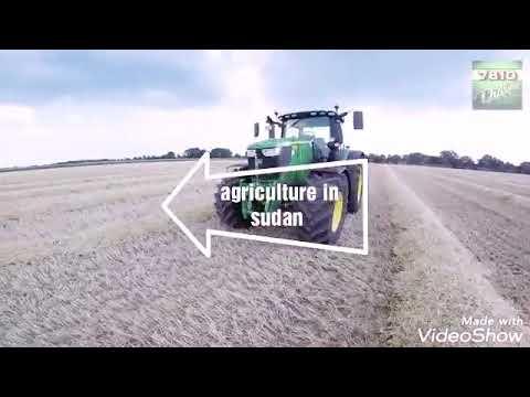 Download Agriculture in sudan beller