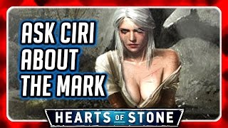 Witcher 3 🌟 Why Ciri Exposes Her Breasts, Ask Ciri about Master Mirror