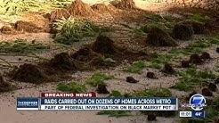 Police raid more suspected black market marijuana grows following investigations in Denver metro
