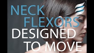 Designed to Move | Sternocleidomastoid and Forward Head Posture
