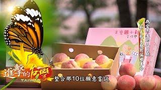 為愛而生的五月桃 新手校長發起偏鄉革命--第022集《進擊的台灣》