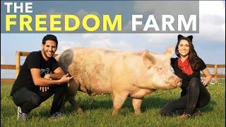 The Freedom Farm