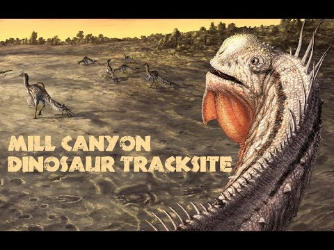 My Nerd Nite talk on The Mill Canyon Dinosaur Trackway