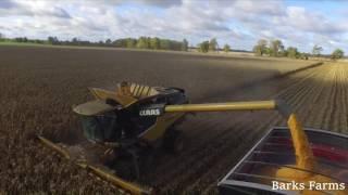 Mid Michigan Harvest 2016