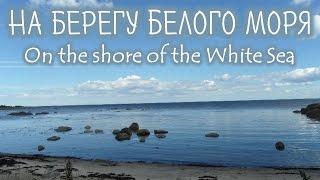 Intermediate Russian: On the shore of the White Sea. RUS CC