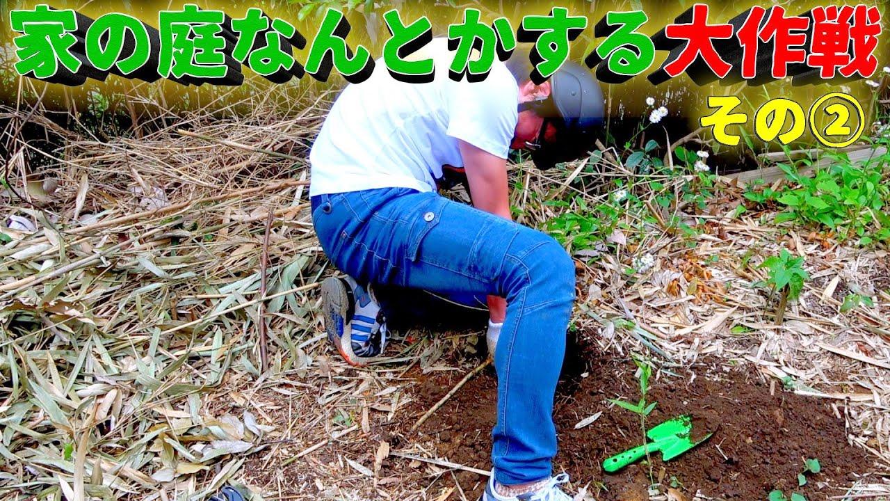【家の庭なんとかする大作戦②】「笹の根ってどうすりゃいいの?」
