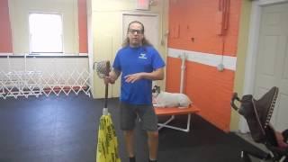 Aggressive Dog Rehab Off Leash Training- Oliver