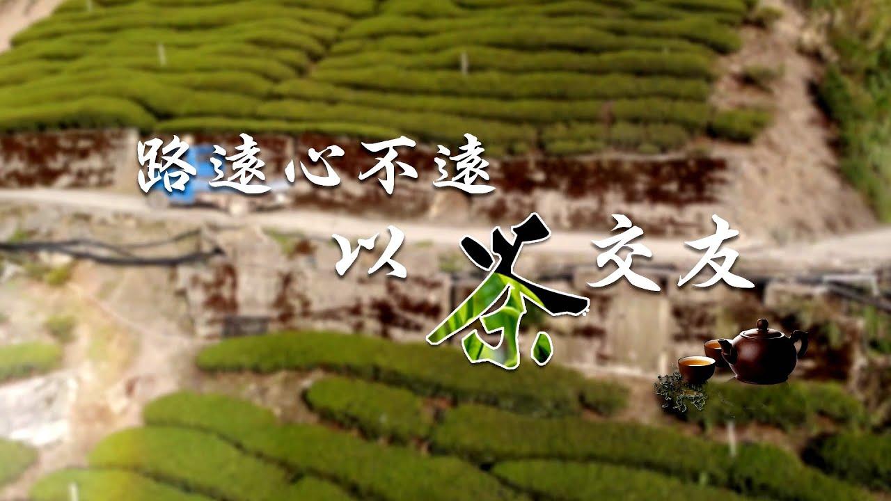 【台灣茶路】大茶農時代~路遠心不遠 以茶交友「華崗邱唐杏」