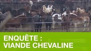 ENQUÊTE: IMPORTATIONS DE VIANDE CHEVALINE DEPUIS L'AMÉRIQUE DU NORD