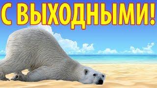 Прикольные поздравления с выходными. Видео открытка поздравления с пятницей