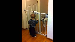 Baby Escape Artist Wants Doggie Out