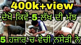 ਦੇਖੋ ਨਸ਼ੇੜੀਆ  ਦਾ ਹਾਲ 5 lakh di majh vechi 5 hjaar diShare ਜਰੂਰ ਕਰੋ   latest Punjabi Full video  