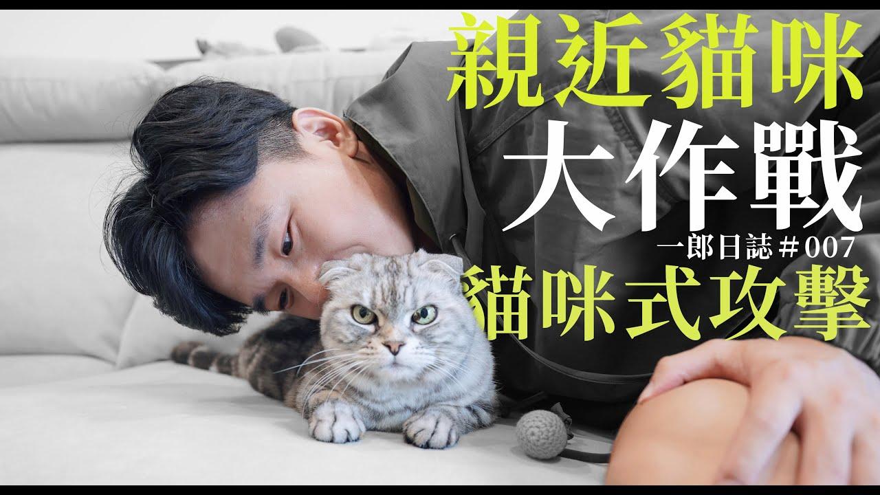 一郎日誌|親近陌生貓咪大作戰!|要不要被貓攻擊?