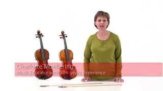 Otto Benjamin Violin 4/4 W/Pernambuco Bow, Oblong Case Standard - ML300 and ML500