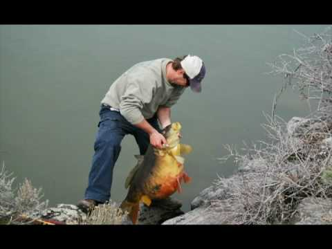 Idaho state record fish youtube for Ohio out of state fishing license