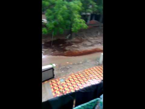 Ahmedabad municipal Corporation dead management.(1)