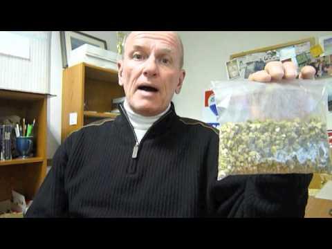 vermiculite-and-asbestos