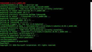 Installiere PowerShell mit Docker in einem Linux Ubuntu Container