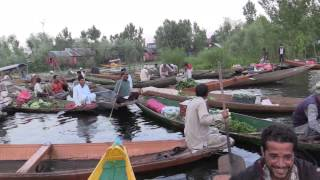 Srinagar: Captivating Footage of Peace in the City on Water