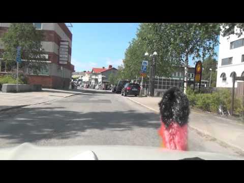 Bredviken Vitvattnet Björkfors Näsbyn Kalix Rolfs Innanbäcken E4 Schweden Sweden 13.7.2015