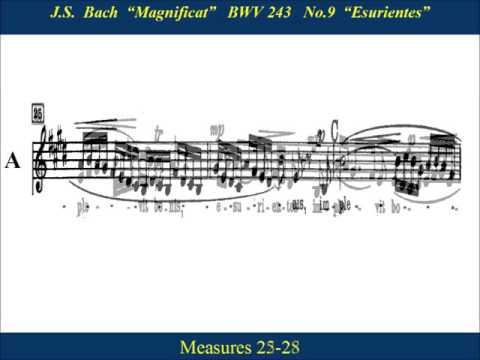 9 - JS Bach Magnificat - Esurientes - Alto