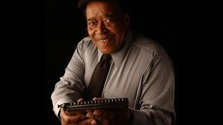 "James Cotton  ""23 Hours Too Long"" !!"