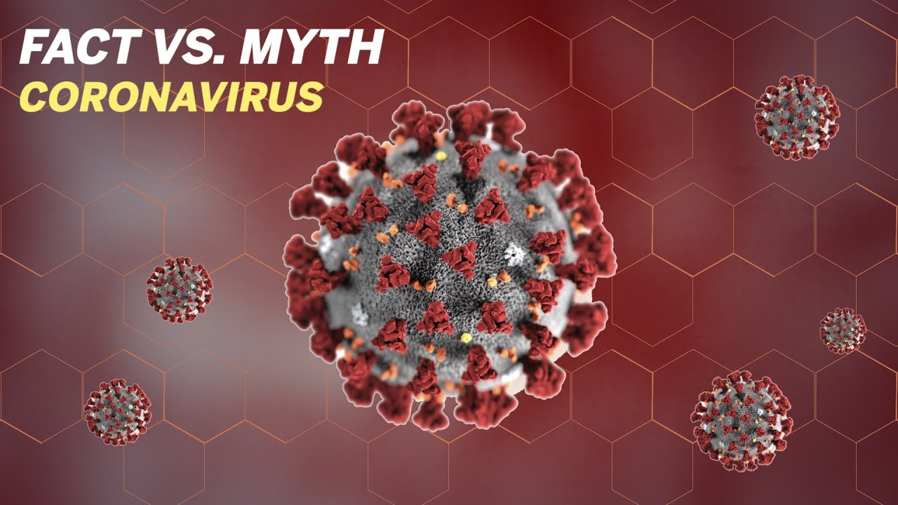 Fact vs. Myth: Coronavirus