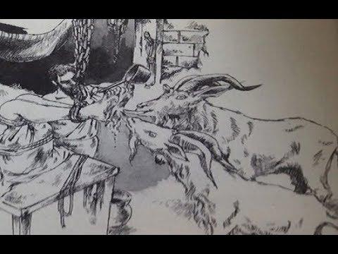 【衝撃】「ヤギ責め」中世ヨーロッパで実在したある部分を舐められるだけの拷問がヤバすぎる!!本当なの?まるで嘘のような話