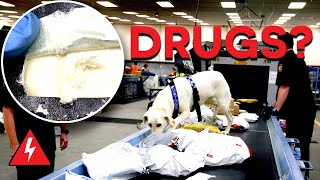 Customs Officers Search for Drugs! | Customs UK | Border Patrol | Locked Up Abroad