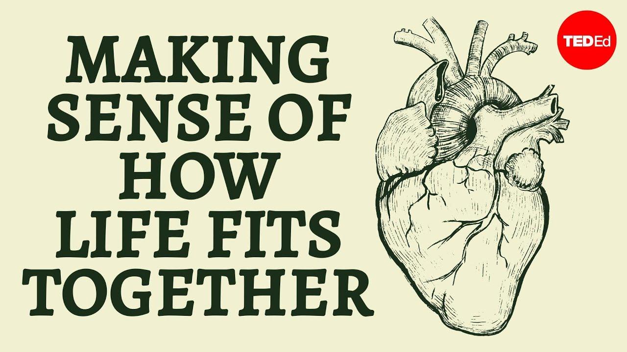 Science Snc1 L And Snc2 L