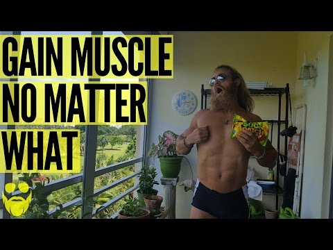 HOW TO GAIN MUSCLE - HARDGAINERS AND ECTOMORPHS   Daily Swole 060