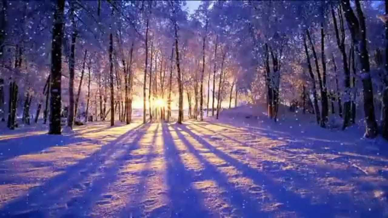 Stardock Animated Wallpaper Winter Sunset Animated Desktop Wallpaper Dreamscapes