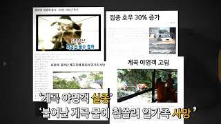 [생활 밀착형 재난안전대책 프로젝트] 여름철 계곡야영 …