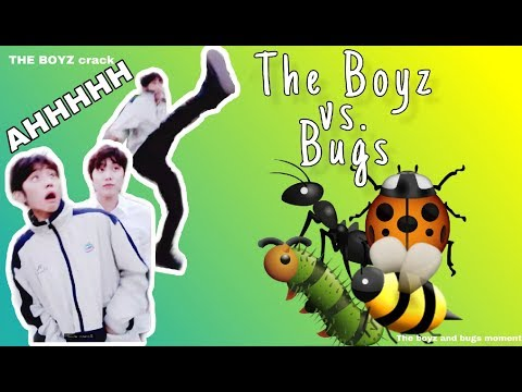 THE BOYZ vs BUGS | the boyz crack | 더보이즈